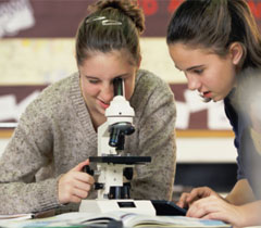 Research and education in science, technology, engineering, mathematics